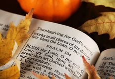 Thanksgiving detail Stock Photography