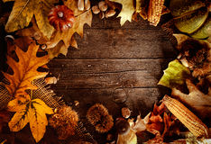 Thanksgiving dinner. Autumn fruit on wood with copyspace. Thanksgiving autumn background Royalty Free Stock Photos