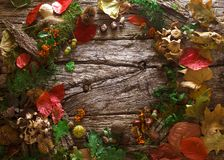 Thanksgiving dinner on wood royalty free stock images