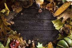 Thanksgiving dinner on wood royalty free stock photo