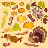 Thanksgiving elements set  on light background Stock Photography