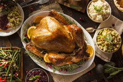 Thanksgiving fait maison entier Turquie