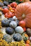 Thanksgiving and fall decor Stock Photos