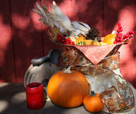 Thanksgiving Fall Harvest royalty free stock photos