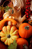 Thanksgiving Fall Harvest. Thanksgiving Harvest Basket with pumpkins, gourds, Indian Corn, and red berries
