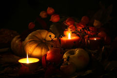 Thanksgiving Fall Harvest II Royalty Free Stock Photography