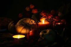 Thanksgiving Fall Harvest Stock Photos
