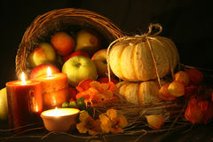 Thanksgiving Fall Harvest Royalty Free Stock Images