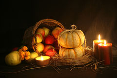 Thanksgiving Fall Harvest Royalty Free Stock Photo