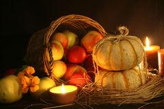Thanksgiving Fall Harvest Stock Photography