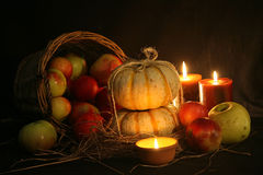 Thanksgiving Fall Harvest Stock Images