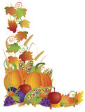 Thanksgiving Fall Harvest and Vines Border. Thanksgiving Day Fall Harvest Pumpkin Eggplant Grapes Corns Apples with Leaves and Twine Border Illustration Stock Images