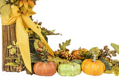 Thanksgiving and Fall Themed Arrangement Stock Images