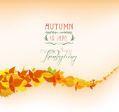 Thanksgiving falling leaves background Royalty Free Stock Photo