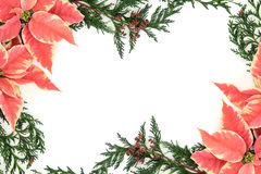 Thanksgiving Floral Border Stock Photography