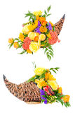 Thanksgiving flower arrangement in cornucopia. Basket isolated on white Royalty Free Stock Photo