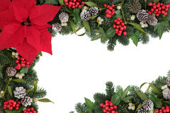 Thanksgiving Flower Border. Thanksgiving and christmas border with red poinsettia flower, holly, ivy, mistletoe, blue spruce fir and snow covered pine cones over Stock Images