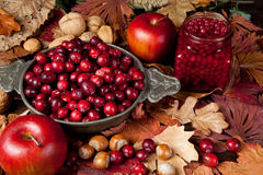 Thanksgiving fruits Stock Images