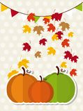 Thanksgiving fruits Royalty Free Stock Photos