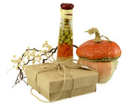 Thanksgiving gift Stock Images