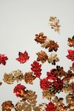 Thanksgiving Glitter Stock Images