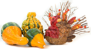 Thanksgiving Gourds with Turkey Royalty Free Stock Photo