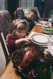 Thanksgiving: Little Girl Takes A Taste Of Turkey stock image