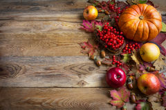 Thanksgiving  greeting background with orange pumpkins, apples a Stock Images