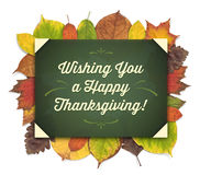 Thanksgiving Greeting Card with a Green Label and Autumn Leaves Royalty Free Stock Image