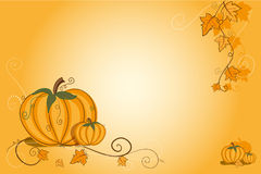 Thanksgiving greeting card - pumpkin Stock Photo