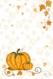 Thanksgiving greeting card - pumpkin Royalty Free Stock Image