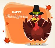 Thanksgiving greeting card with a turkey bird wearing a Pilgrim Stock Photos