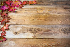 Thanksgiving  greeting with fall maple leaves on rustic wooden b Royalty Free Stock Photo
