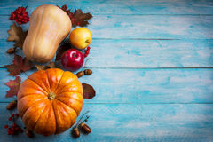Thanksgiving  greeting with orange pumpkins and fall leaves on b Stock Image
