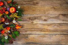Thanksgiving  greeting with pumpkin, apples and green leaves on Royalty Free Stock Photography