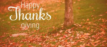 Composite image of thanksgiving greeting text. Thanksgiving greeting text against autumn leaves by tree trunk on field Royalty Free Stock Photography
