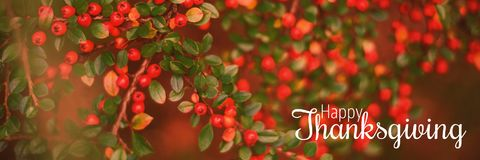 Composite image of thanksgiving greeting text. Thanksgiving greeting text against berries growing on branch Royalty Free Stock Photography