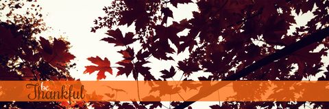 Composite image of thanksgiving greeting text. Thanksgiving greeting text against branch of maple leaves in autumn stock image