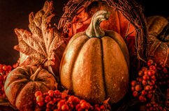 Thanksgiving Harvest Background Royalty Free Stock Images