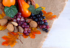 Thanksgiving harvest of fruits and nuts. Fruit including orange pear and grapes with nut varieties in a cornucopea has autumn leaves on burlap with rustic wooden stock photos