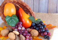 Thanksgiving harvest of fruits and nuts. Fruit including orange pear and grapes with nut varieties in a cornucopea has autumn leaves on burlap with rustic wooden royalty free stock image