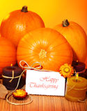 Thanksgiving holiday card Royalty Free Stock Photography
