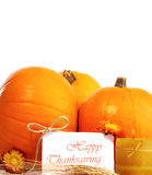 Thanksgiving holiday decorative border Stock Photos