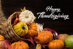 Thanksgiving or fall cornucopia. A Thanksgiving holiday decorative cornucopia with pumpkins, squash, leaves etc Royalty Free Stock Photos