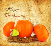 Thanksgiving holiday greeting card Royalty Free Stock Photo