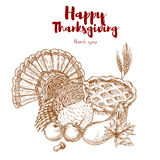 Thanksgiving holiday sketch turkey, pie, harvest Royalty Free Stock Photography