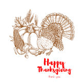 Thanksgiving holiday turkey symbol skech element Stock Images