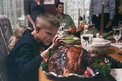 Thanksgiving: Hungry Boy Takes A Bit Of Turkey To Taste royalty free stock image