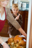 Thanksgiving: Hungry Boy Waits While Turkey Is Basted royalty free stock images