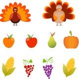 Thanksgiving Illustrations, Turkey, Grape, Corn, Apple Illustrations. Thanksgiving illustrations, turkey illustration, grape, red grape, purple grape, apple Stock Image